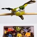 Набор птиц 10см (12шт)