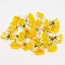Головки цветов в асс (3,5см)
