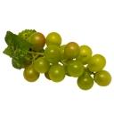 Виноград 10см